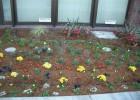 石川病院別館 自動灌水