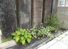 ☆枕木と植栽☆