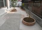 T様邸 丸い花壇 シマトネリコ、ホンコンエンシス